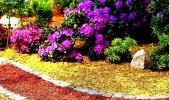Щепа декоративная фиолетовая