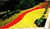 Щепа декоративная желтая