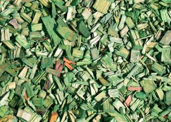 Мульча (щепа) зеленая