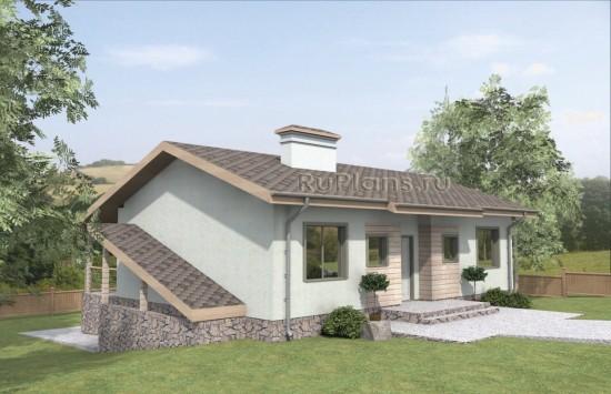 Проект индивидуального одноэтажного жилого дома с подвалом. Rg4770